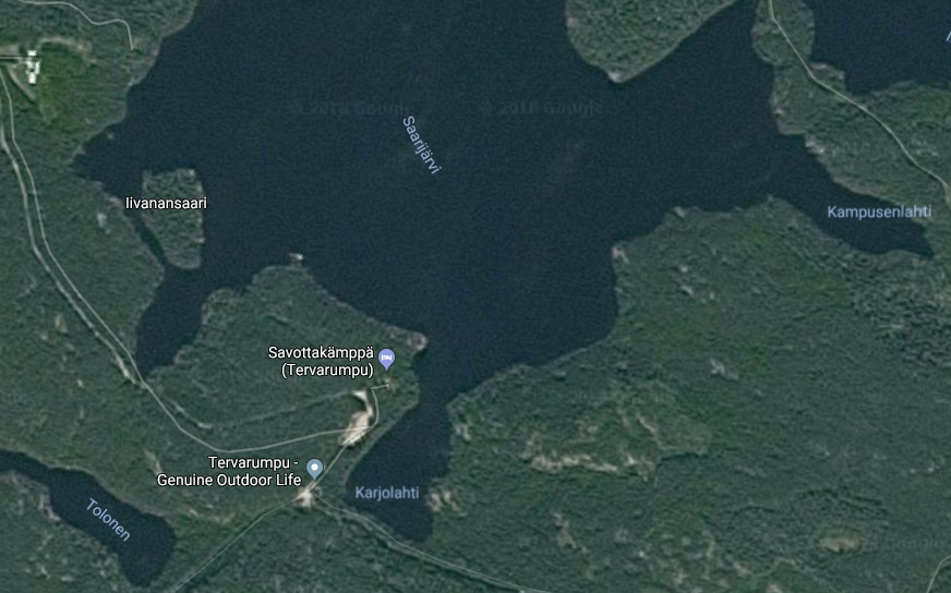 Озеро Саариярви. Вид со спутника.