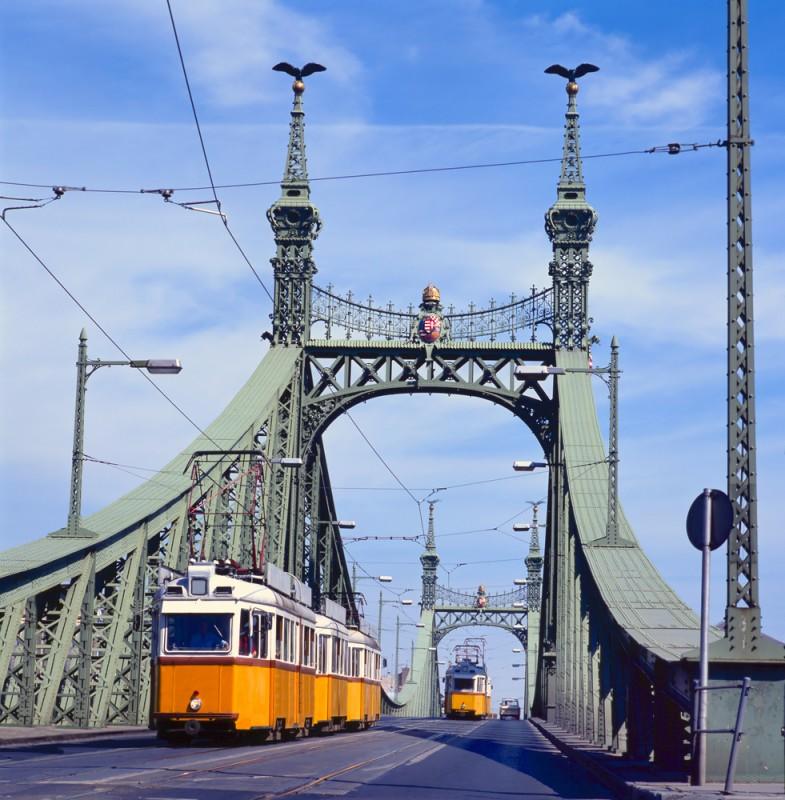 Турулы на мосту Свободы