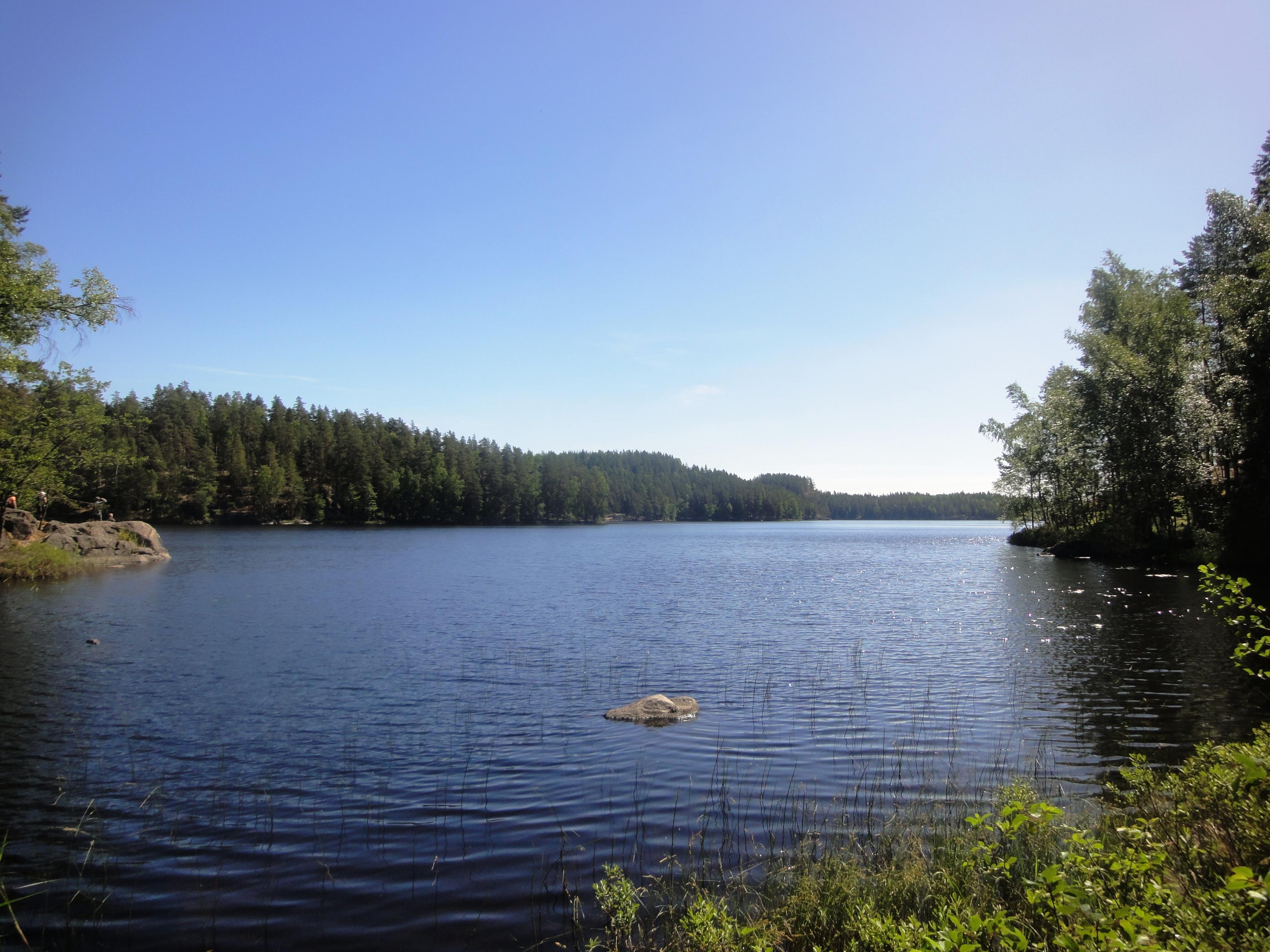 Национальный парк Реповеси.
